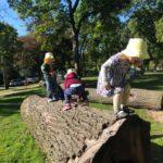 natural playground 2